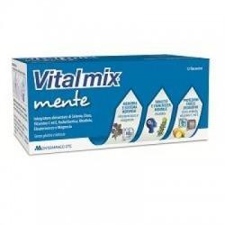 Fruvis - Vitalmix Mente 12 Flaconcini - 909310322