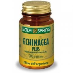 Angelini - Body Spring Echinacea Plus 30 Capsule - 903521348